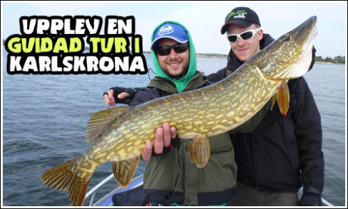 Camp Dragsö Sportfishing, Experience guided pike fishing with our guides